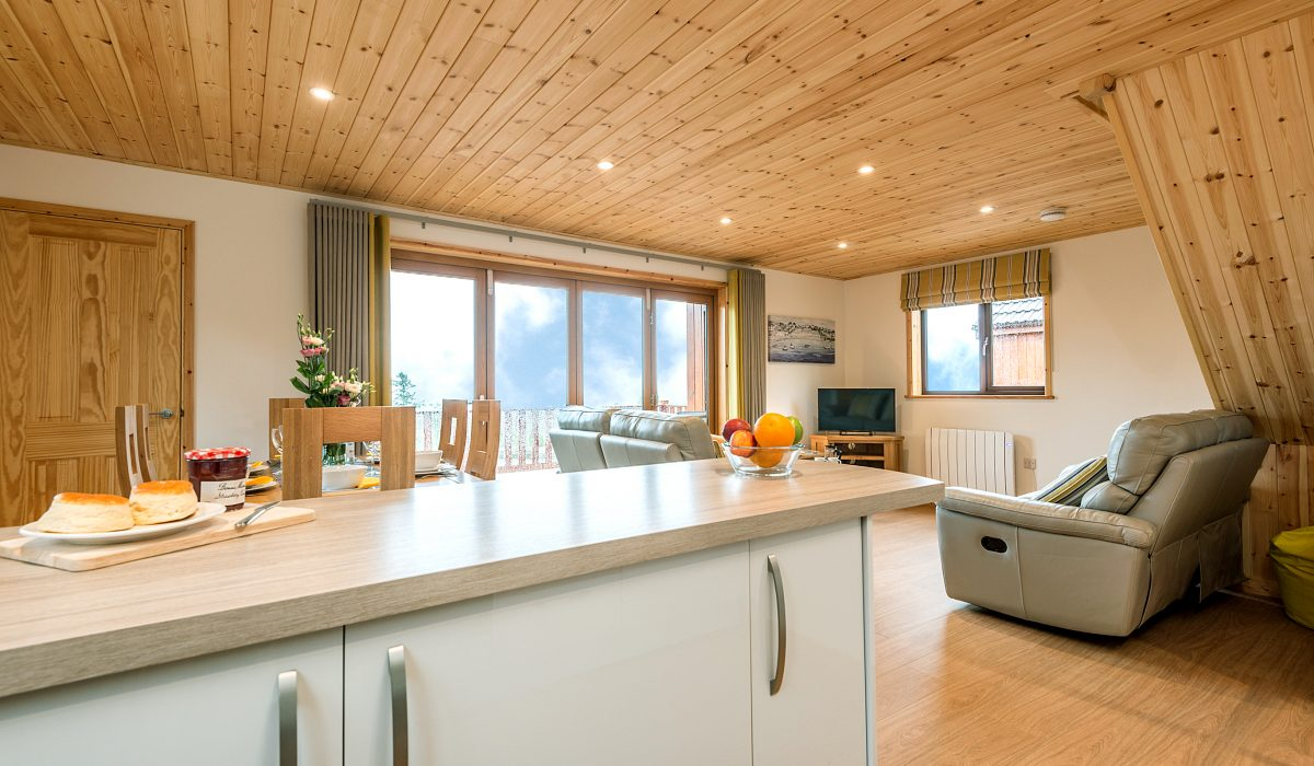 E50 Perrins - Living Kitchen & Dining 1
